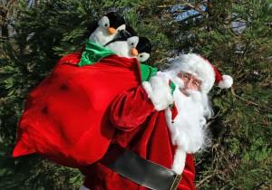 Santa Claus ready for christmas at Upton Country Park, Dorset
