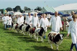 Dorset County Show, Dorchester