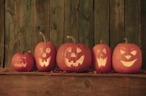Halloween Spooky Trail at Brownsea Island, Dorset