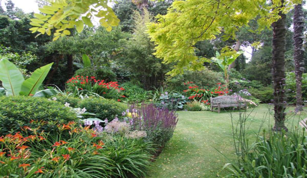 Sub tropical gardens at Abbottsbury
