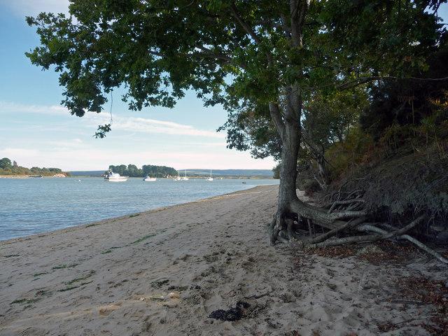 Arne-Beach1