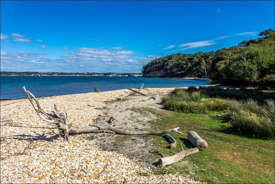 Brownsea-Island-1