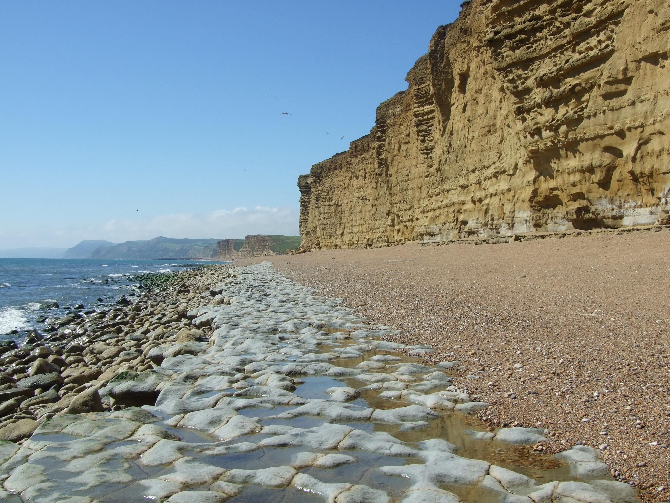 burton bradstock coastline