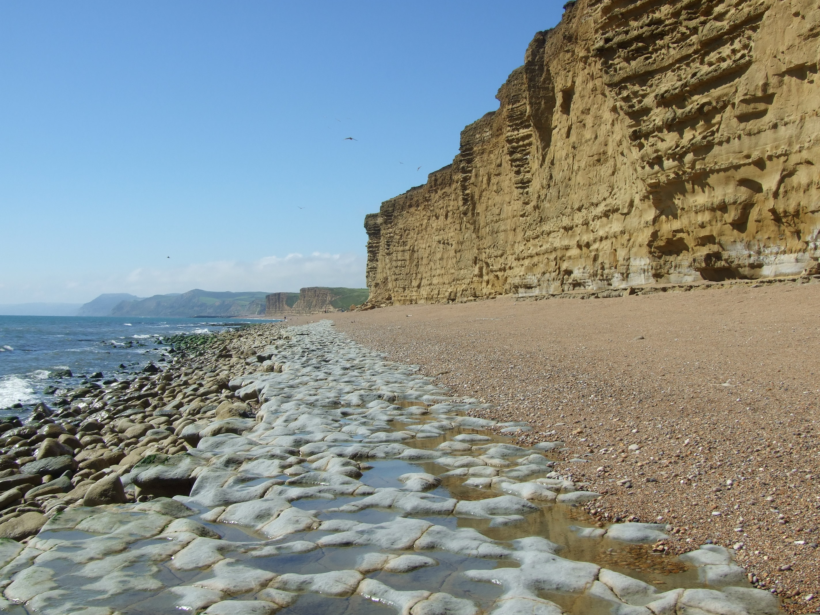 holiday location in dorset