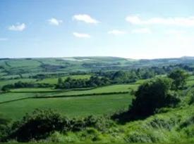 dorset countryside and dorset wildlife