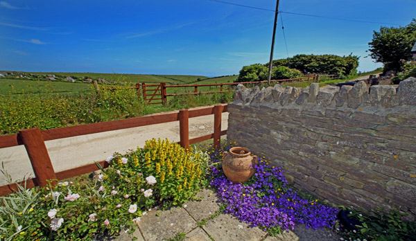 cottage to rent in worth matravers front space