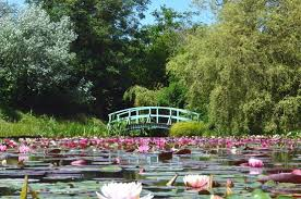 bennetts-water-garden