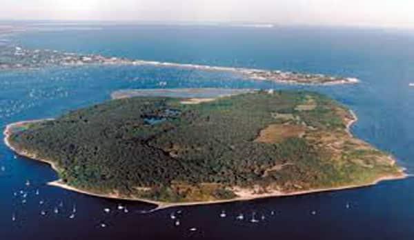 trips to brownsea island