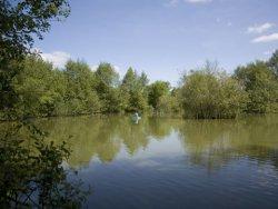 whitemoor-lakes-ringwood