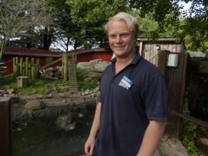 What it feels like to work at Weymouth Sea Life Adventure Park