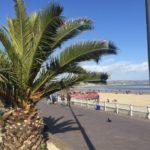 weymouth bay luxury beach